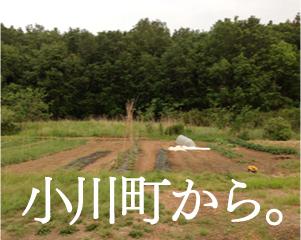 小川町から